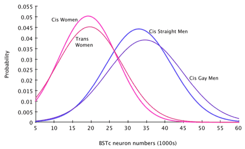 Graph showing the distributions of BSTc neuron numbers in cissexual women, transsexual women, cissexual men, and cissexual gay men.