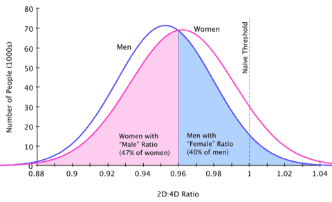 Distribution of 2D:4D digit ratio between men and women.